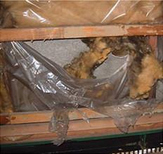 結露で劣化したグラスウール断熱材